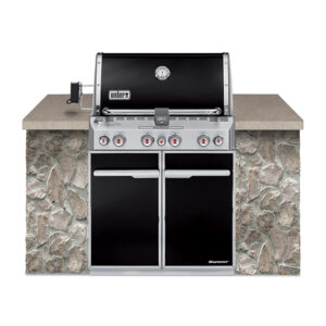 Weber Summit E460 LP