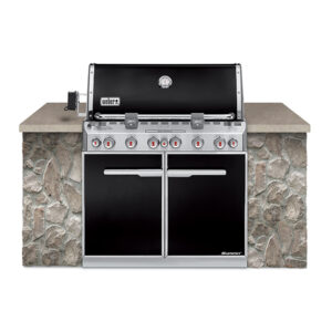 Weber Summit E660 LP
